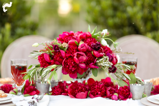 Naples Wedding Photography Set Free Photographer Isn't She Lovely Florals