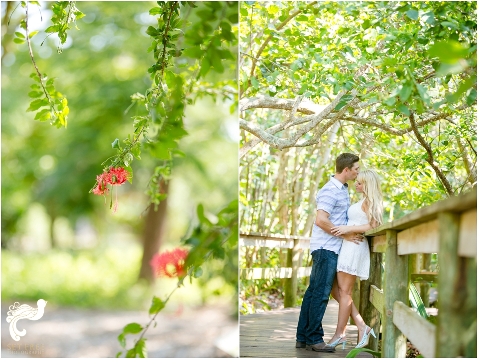 Naples Wedding Photographer Set Free Photography Engaged Ashley Mitch At Marie Selby Gardens
